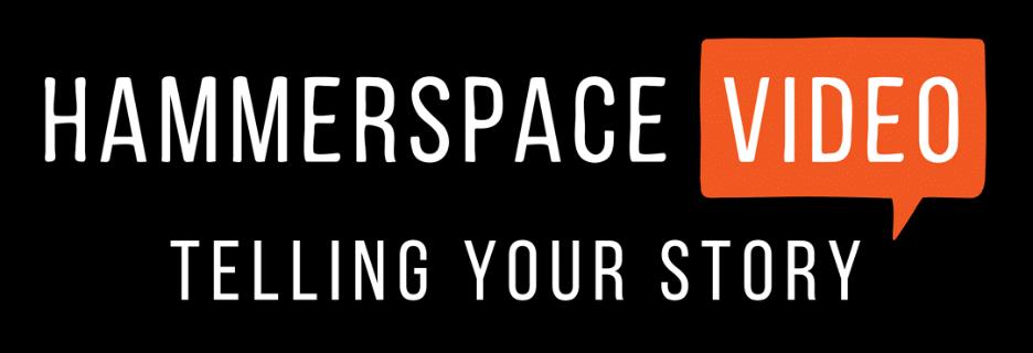 Hammerspace Video Logo
